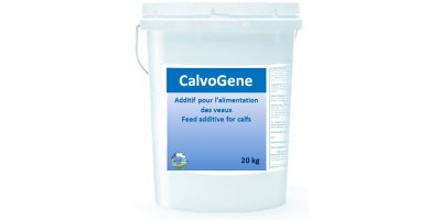 Model CalvoGene - Additive for Calf Feed