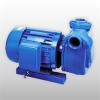 Tiger - Model WS-HC-10 - Irrigation Pump