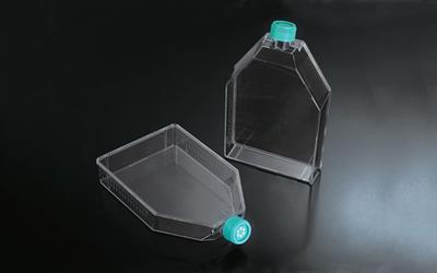 Cell and Tissue Culture Flask