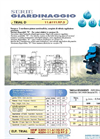 Triplex - Model WJC-U Series - Piston Pumps Brochure