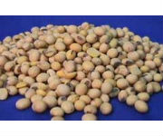 Enlist E3 Soybeans Successfully Complete FDA Consultation