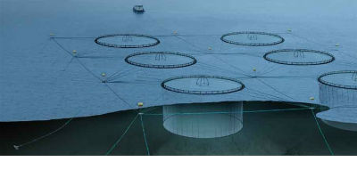 Plastic Aquaculture Cages