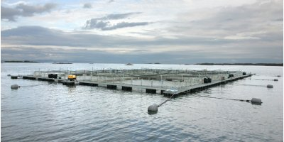 AKVA - Model EX - Galvanized Steel Cages with Extra Wide Walkways