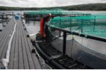 Aquaflex - Fish Farm Cages/Pens