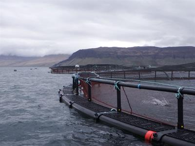 Oceanflex - Model 315 - Fish Farming Pen