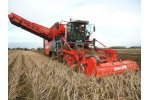Dewulf - Model Kwatro - 4 Row Self Propelled Potato Harvester