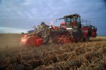 Dewulf - Model R4060 - 2-Row Self Propelled Potato Harvester with Elevator