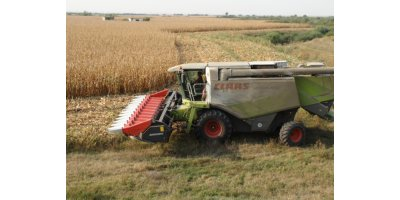 Dominoni - Model Line - Mais - Maize Headers