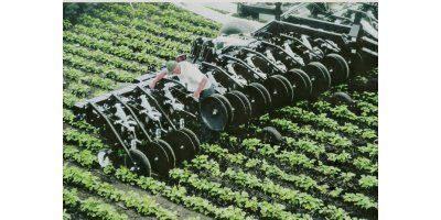 Elmer - Row Crop Cultivator