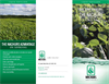 Soybeans Brochure