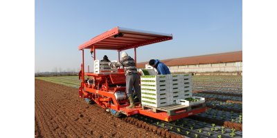Model FPC  - Layer and Transplanter