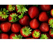 Conventional, compost, organic production compared for strawberry