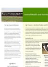 Animal Health and Nutrition Recruiting Brochure