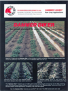Dammer Diker - Implanted Reservoir Tillage System Brochure