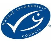 Fisheries certification update: November 2013