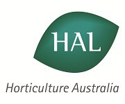 HAL appoints two new Board Directors