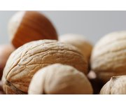 Nut Industry gears up for Korea Free Trade Agreement
