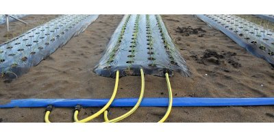 Irritec - Model iSiplastTape - Drip Irrigation System