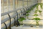 KGP - Greenhouse Heating