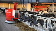 Livestock Event to stage world first live robotic demonstration
