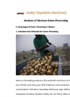 Analysis of Mexican Onion Processing
