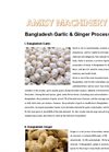 Bangladesh Garlic & Ginger Processing