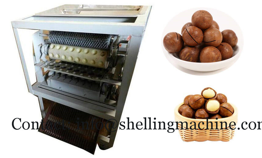 Macadamia nuts grooving sawing machine