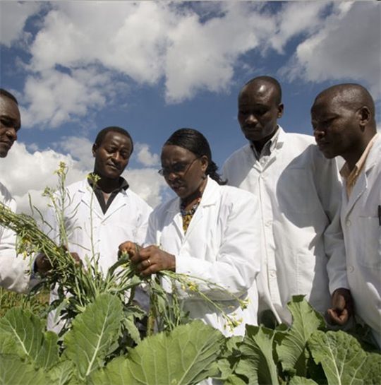 One Planet Fellowship takes action to discover the next generation of African climate scientists in agriculture