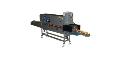 Model ACE-115 - Automatic Punnet Filling Machine