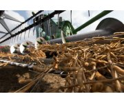 Soybean Exports Brewing in Milwaukee