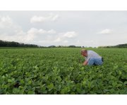 National Soy Checkoff Targets Soybean Innovation for Farmer Profit Opportunities