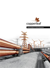Copperleaf - Version C55 - Decision Analytics Software Brochure