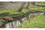 Edgesaver - Stream & Pond Bank Stabilization & Renovation