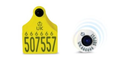 Eid Button Secondary Cattle Tag