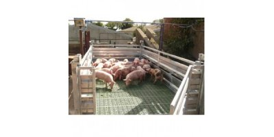Pig Batch Weighers