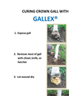 GALLTROL-A/GALLEX Pamphlet Brochure