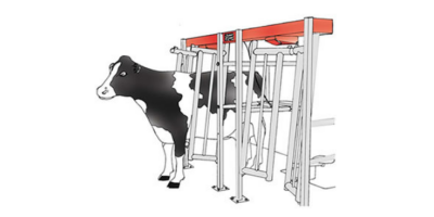 Agromatic - Walk Through Flat Barn Parlor System