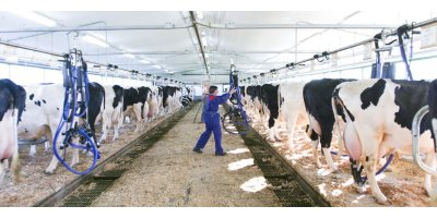 DeLaval - Stanchion Milking Systems