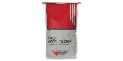 Calf Accelerator