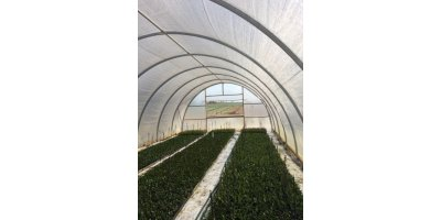 20` x 96` Cold Frame with Poly - Wire Lock & Wire Greenhouse Packages