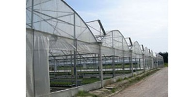 Multitunnel Greenhouses