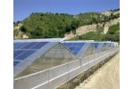 Greenhouses with Photovoltaic Panels