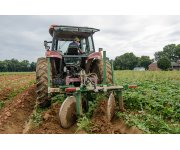 Webinar: Fertility Considerations for Optimal Potato Production