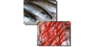 Krill for Aquaculture