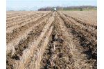 Strip Cat - Strip Tillage System