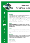 Flowercare - Carnation Lilium Brochure