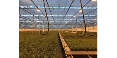 Venlo - Model 13.478 m2 - Greenhouses