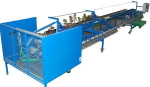 Mecaflor - Triplants Vine Seedlings Cutting Machine