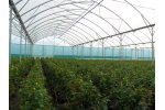 Tube  - Model 12.80  - Fix Ventilation Greenhouse