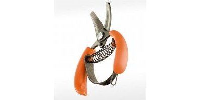 Orange Pruner Shear with Loop